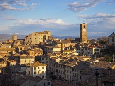 Discover Anghiari and its artisan labours with a private tour
