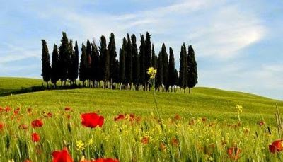 Visit and discover Tuscany where time passes slowly between Art Nature and Tradition